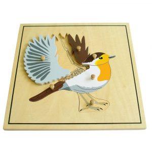 Puzzle Montessori el pájaro y su esqueleto