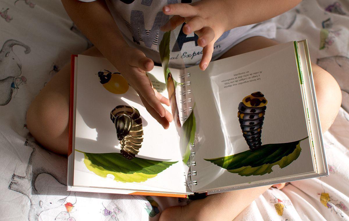 Libros infantiles montessori
