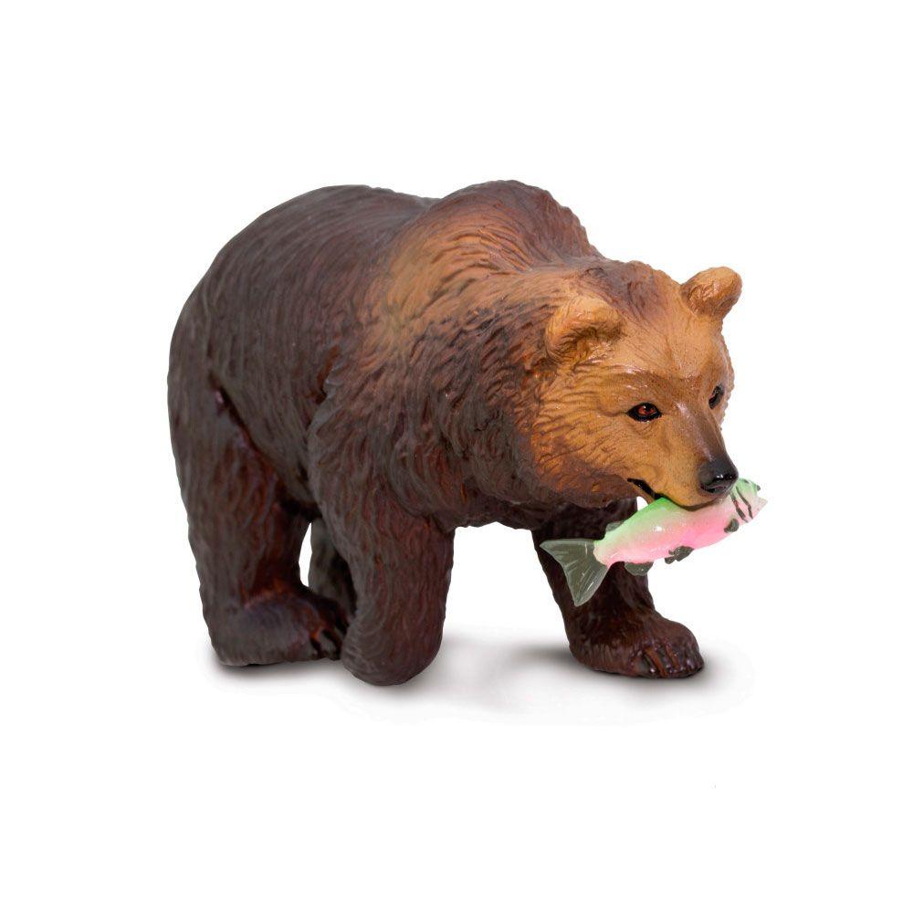 Oso grizzly con salmón