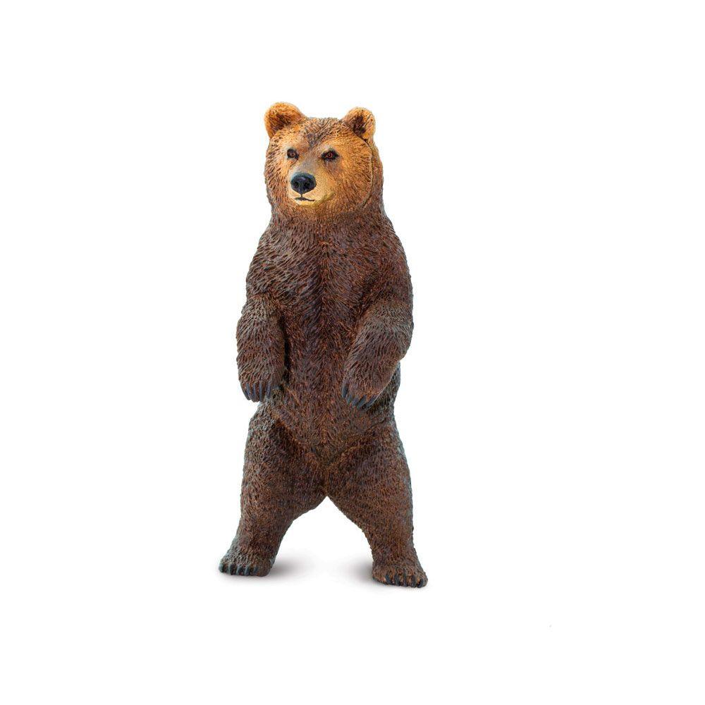 Oso grizzly en pie