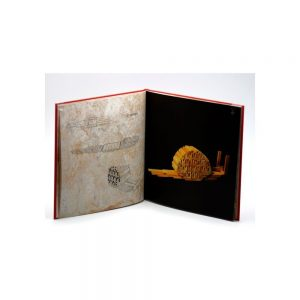 Libro Kapla figuras y construcciones