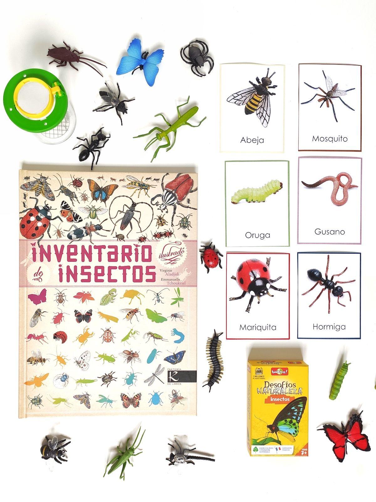 insectos-2