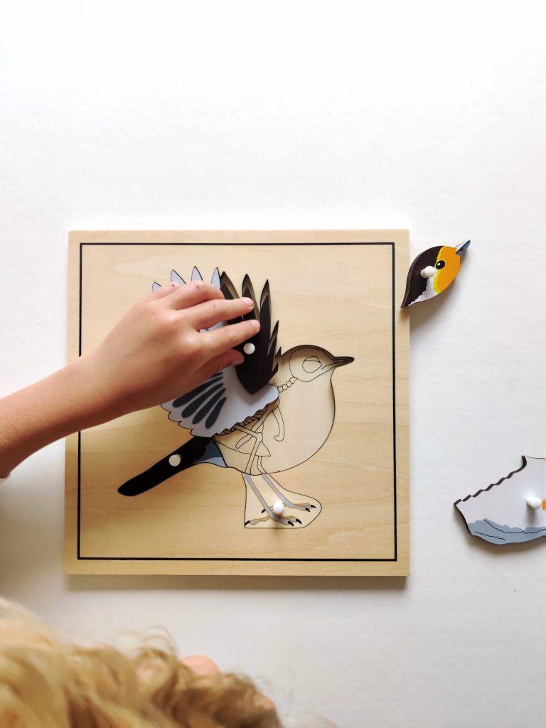puzzle Montessori pájaro