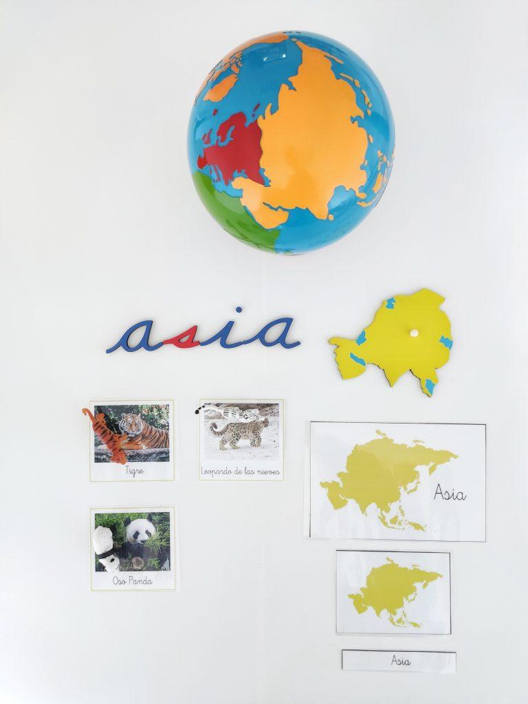 Continentes - animales de Asia