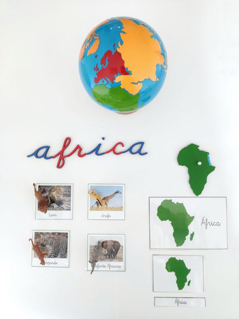Continentes - animales de África